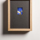 Jan Fabre ILAD XVII 1987-2015 ektachrome, glass, wood, electronics / ektachrome, legno, componenti elettronici ekta: 5,6 x 4,1 cm / framed: 27 x 20 cm
