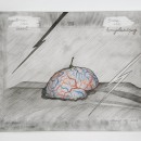 Jan Fabre | Brain of incidence = brain of reflection, 2014 | HB pencil, colour pencil on photo paper | 24 x 30,5 cm | Photographer Pat Verbruggen | Copyright Angelos bvba